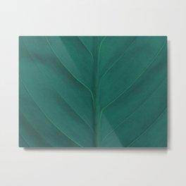 Tidewater Green Leaf Metal Print