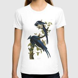 Columbia Jay Illustration by J.J. Audubon T-shirt