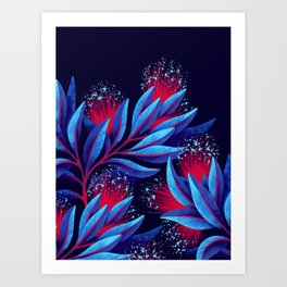 Pohutukawa - Red / Blue Art Print
