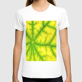 photosynthesis leaf green structure T-shirt