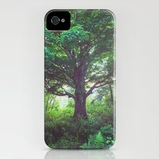The Giant Elm iPhone (4, 4s) Slim Case