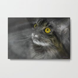 Sweet and scaredy cat  Metal Print