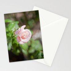 Little Pink Rose Stationery Cards