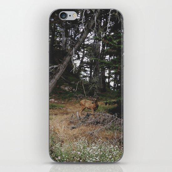 Lobos Deer iPhone & iPod Skin