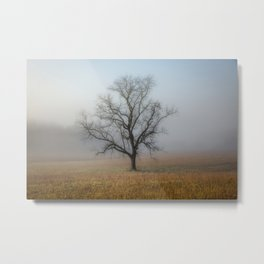 In a Fog - Mystical Morning in the Great Smoky Mountains Metal Print