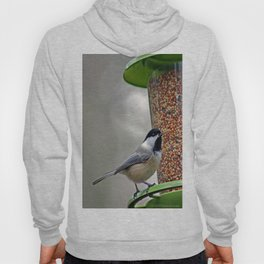 Great Expectations Hoody