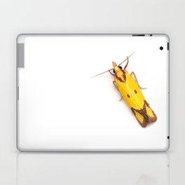 Sulphur Knapweed Moth (Agapeta zoegana) Laptop & iPad Skin