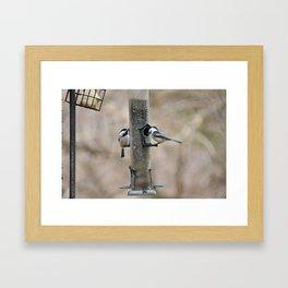Feed the Birds Framed Art Print