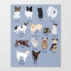 14 Dogs & Kitties Canvas Print