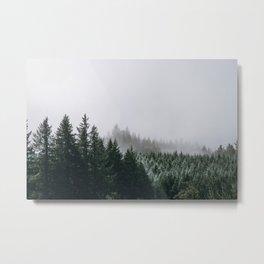 Into the Wild XV / Oregon Metal Print