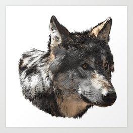 Wolf sideways canvas, animals, wolves Art Print