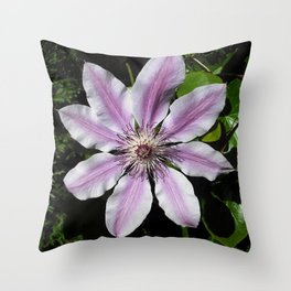 Clematis Nellie Moser Throw Pillow