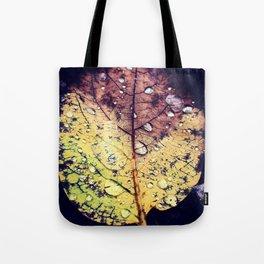 Colors of Rain Tote Bag