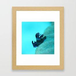 On an adventure Framed Art Print