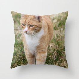 Berkley Throw Pillow