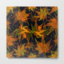 Autumn colour Metal Print