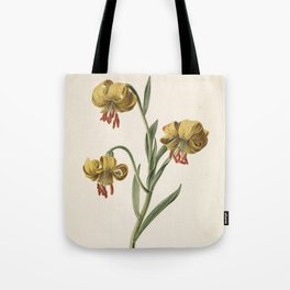 M. de Gijselaar - Branch with three yellow lilies (1834) Tote Bag