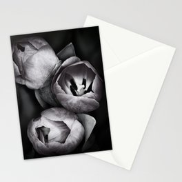 Black and White Tulips Stationery Cards