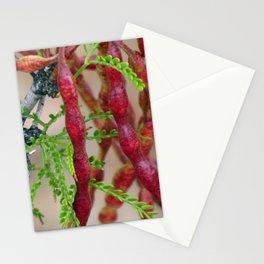Cats Claw Stationery Cards