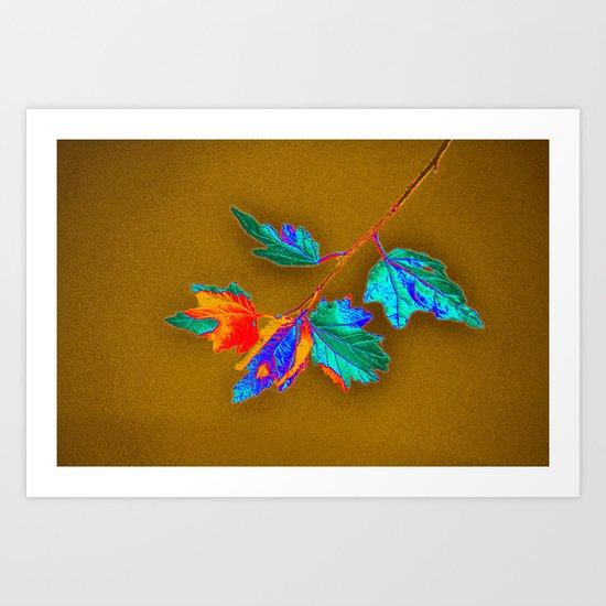 leaves in color Art Print