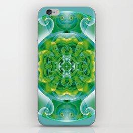 Mandalas of Healing and Awakening 4 iPhone Skin
