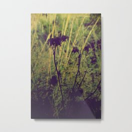 The dark side of the nature Metal Print