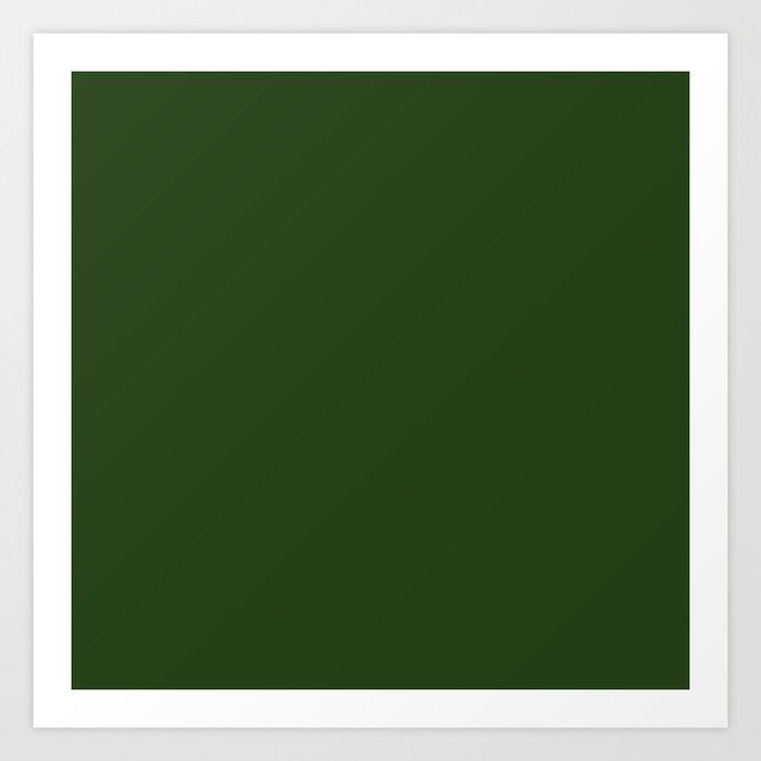 Solid Dark Forest Green Simple Solid Color All Over Print Kunstdrucke
