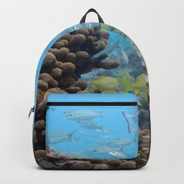 Watercolor Fish, French Grunt and Tomtate 01, St John, USVI Backpack