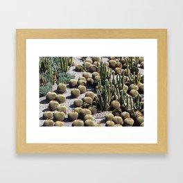 Cacti Paradise Framed Art Print
