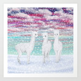 alpacas in the snow Art Print