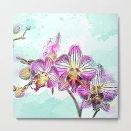 Orchids 02 Metal Print