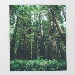 Redwood Forest  Throw Blanket