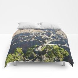 North Rim Comforters