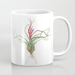 Twisty Tillandsia Coffee Mug