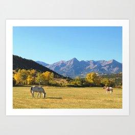Dallas Creek Meadows 2 Art Print
