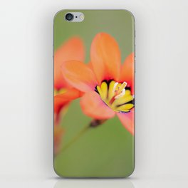 Bloomin Pretty iPhone Skin