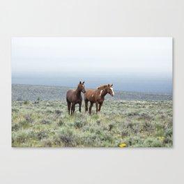 Wild Horses - Steens No. 1 Canvas Print