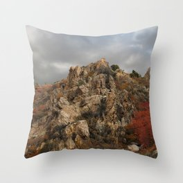 Rocky Mountain with a Splash of Color Throw Pillow