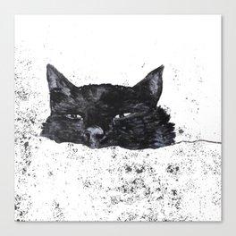 zzz cat Canvas Print
