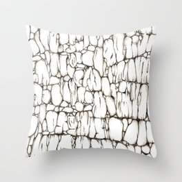 Fondo de Piedra Throw Pillow