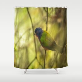 Nonpareil: A Painted Bunting Shower Curtain