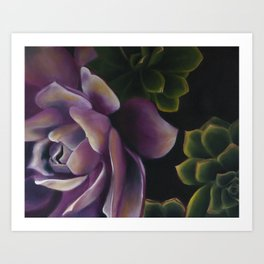 Colorful Succulents  Art Print
