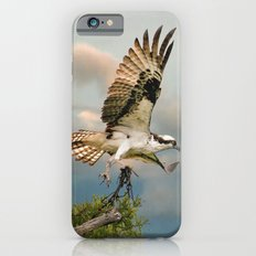Osprey with nesting material Slim Case iPhone 6s