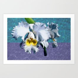 White Orchid Over Water Art Print