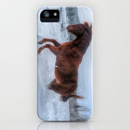 Fire and Ice - Equine Photography iPhone Case