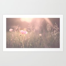 June Evening Art Print