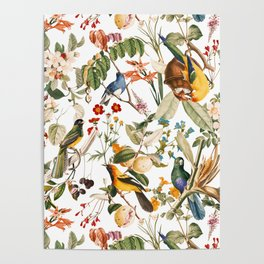 Floral and Birds XXXII Poster