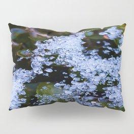 Icy Webb Pillow Sham