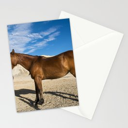 Theres not much to graze on for these horses in the rugged terrain north of Big Bend National Park i Stationery Cards