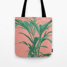 Palm Illustration - Portrait of Kentia 01 Tote Bag